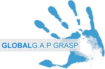 La Veguilla obtiene las certificaciones Globalgap y Globalgraps
